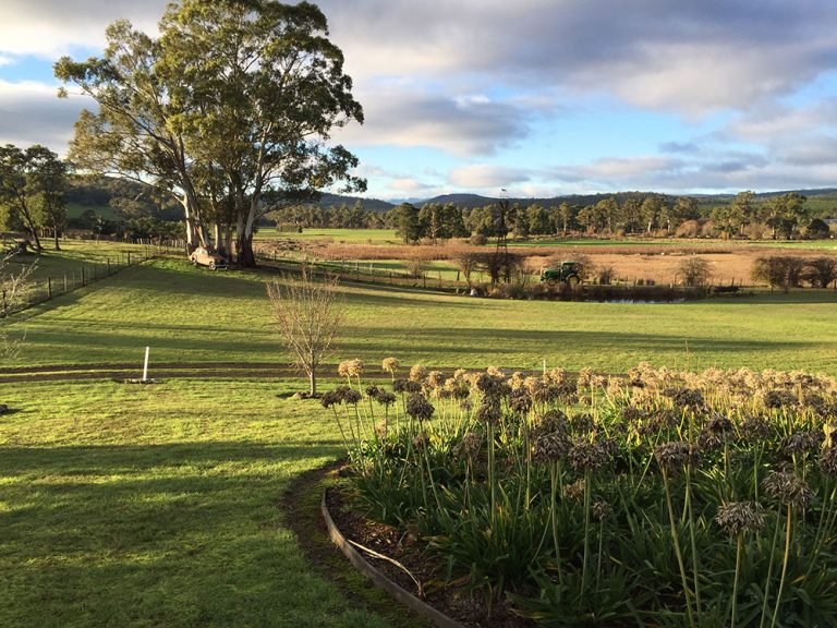 Duffy's Country Accommodation landscape